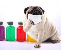 ナチュラル殺菌風邪薬の調合法を伝授します 自らを実験台にして効果があったものだけをご紹介しています。