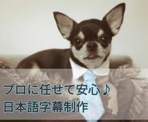 納期最短1日!5分以下の映像の日本語字幕作ります プロの映像翻訳者が丁寧に対応いたします