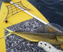 SUPフィッシングをはじめたい方へ、SUPボードの選び方や釣り方、道具やポイントなどアドバイスします