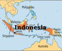 1日でインドネシア語⇄日本語の翻訳をします インドネシア語技能検定試験A級保有者が訳します!
