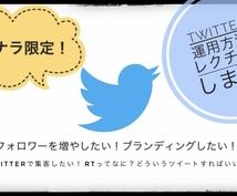 Twitterの運用方法教えます プロがTwitter運用についてアドバイスします!