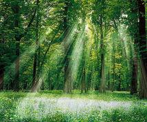 望む未来に向けて後押しします 霊感霊視を用い、未来にむけてどうすればよいかお答えします