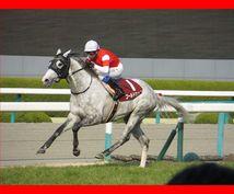 競馬の基本!高い確率で馬券に絡む馬を教えます 競馬で勝つためには馬券対象となる馬を見つける事が重要です!