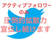 Twitter複数垢で◆40万人超◆に宣伝します 圧巻の1万インプ!宣伝・集客・拡散・ブログ・YouTube