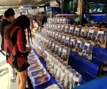 タイの旅行についてアドバイスします 後悔しない旅行のプランを立てましょう