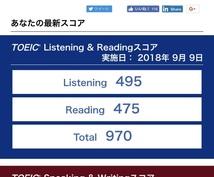 東大生が英訳・和訳します 英検一級・TOEIC970点持ってます!長文も可