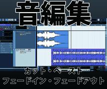 簡単な音編集いたします プロではありませんが音編集歴10年以上の実績