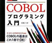 プログラミングのCOBOLの基礎教えます 分からない文脈、どう書いたらいいの?基礎的なことなんでも☆