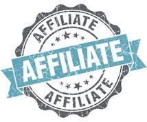 14800円のアフィリエイト教材の中身教えます 一日30分無料ブログを利用するだけで1ヶ月後に10万円