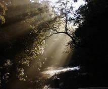 霊感・霊視による鑑定をします 前向きな人生を歩みたい方へのアドバイスです。