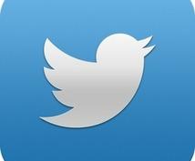 【Twitter】ツイッターアカウント10個を代理作成いたします。