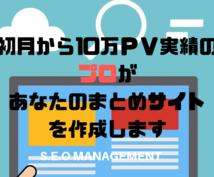 初月に10万PVの実績 プロがまとめサイト作ります 一か月目から10万PV達成経験があります!!高評価連発