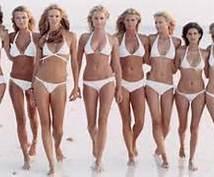 ダイエットサポートを差し上げます アメリカで学んだ健康的に痩せる方法を伝授します。