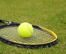 硬式テニスを社会人から始めた方の鍛え方教えます 社会人・新入生からテニス始めたけどスクールに通う時間がない方
