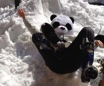 パンダが占いとか全くできないけど前世教えますパンダ