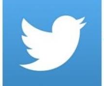 ツイッターの指導いたします 22万人のフォロワーを持つ企業担当者におまかせください