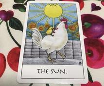 お相手の心の中に入り占います 〜タロットカードであなたの未来を幸せにします〜