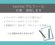 twitterのプロフィールの文章添削します twitterフォロワーを増やすためにはプロフィールが大切