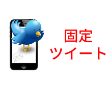 """Twitterの【勝負】固定ツイートを考えます """"勝負ツイート""""で拡散力を高めよう!ツイッター拡散宣伝OP有"""