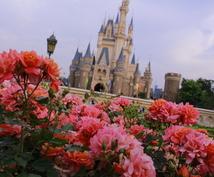 東京ディズニーランド、シーの攻略術教えます 年間パスポートを持っているディズニーファンが教えます。