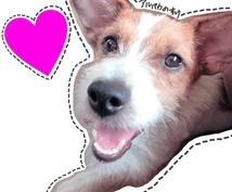 ペットの躾け方をお教えします 修行中訓練士が愛犬との上手な付き合い方をレクチャー