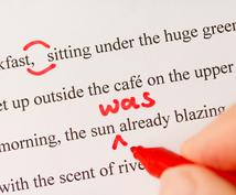 英文の添削お手伝いします 論文・スピーチを直してほしいなど英語のチェックが必要な方!