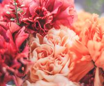 似合う色と色のメッセージで綺麗をプロデュースします 一番似合う色と色の意味の両面からあなたらしさプロデュース!