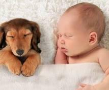 あなたの睡眠改善します 毎日を充実に過ごしたい全ての方へオススメです!
