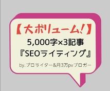 プロライターが5,000字の長文記事を3つ書きます /KW選定,画像挿入,文字装飾,SEOライティングを全て提供