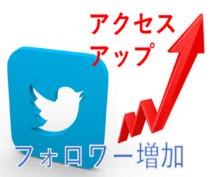 ツイッター2000人にいいねします 完全代行作業!自動フォロワー増加!宣伝・集客・拡散に!
