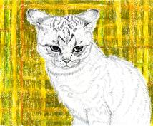 ペットのイラスト描きます ~線密画からオリジナルタッチまで~