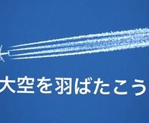 現役パイロットが指導!自社養成の対策を致します 【これがパイロットへの近道】パイロットに興味がある方必見