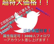 属性別3000人越えのTwitterアカあげます 注意#メインはTwitterで稼げるノウハウです!