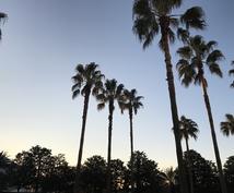 東京ディズニーリゾートでのサプライズ演出考えます ご家族、ご友人、大切な人とさらに素敵な時間を!