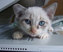 デスクの上がごちゃごちゃでストレス感じている方へ。すっきり片付けるコツをお教えします。