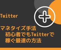 Twitter初心者用のマネタイズ手法を教えます 毎日コツコツできるマネタイズ手法を大公開