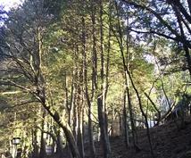 栃木県の観光地に関する記事を書きます 栃木を愛する筆者による、穴場も含めた観光案内