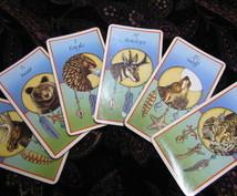 動物たちのカードであなたにアドバイスをお伝えします あなたの内面の課題・彼の気持ち・人生の選択など