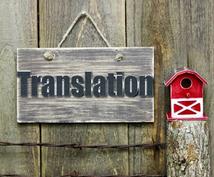 即日納品!商品説明文、動画説明文などの翻訳します こちらは日→英のみの対応となります。