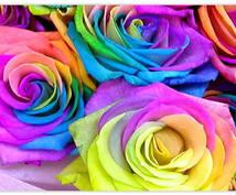 あなたを助けるカラーを教えます その色がよりよく明るい未来へ強化してくれます