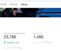 Twitterプレゼント企画でフォロワー増やします アクティブフォロワー100〜300人の増加