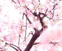 動く春を応援!リーディングレターを届けます あなたのハイヤーセルフ☆から必要なメッセージをお手紙にします