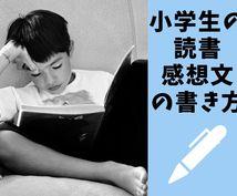 夏休み 小学生の読書感想文の書き方教えます 感動と気持ちを言葉にする表現力が高まる読書感想文の書き方