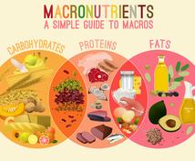 忙しい社会人でもできる効果的なダイエット法教えます あなたに合わせた食事・運動プランをご提案します