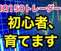 IQ150トレーダーの手法・全て暴露します 【販売開始セール中!】FX初心者が短時間で上達する最高プラン