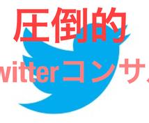 徹底Twitterコンサルみっちり1ヶ月面倒みます 限定値下げ★1ヶ月間Twitterコンサルし続けます!!