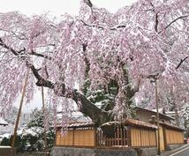 栃木県への観光・出張・お出かけをサポートします 日光や鬼怒川、那須への観光、栃木の温泉へ旅をする方。
