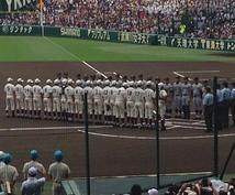 高校野球・プロ野球を楽しく観戦できる方法教えます 興味を持ちたい方、観戦を人一倍楽しむ方法を知りたい方必見!