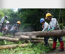 森林整備ボランティアツアー体験ます 森林整備ボランティアツアー体験