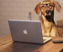ペット関連記事のライティングを承ります 犬猫の情報を扱うサイト様に専門性の高い記事を提供致します